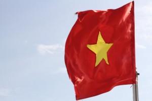 Co Viet Nam