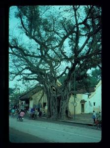 Hanoi 1990 7